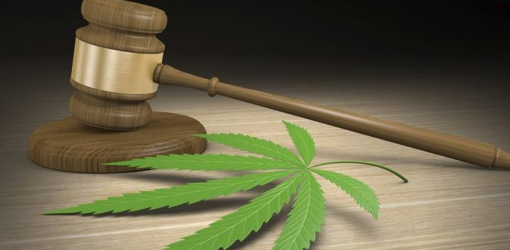 Occ Med Providers Need Clarity on Legal Marijuana in Workers