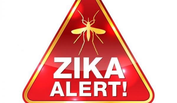 Transmission in Texas Puts Zika Back in the Spotlight