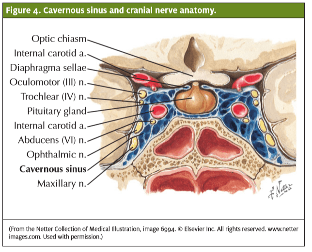 Painful Nose Crusting in a Child | Journal of Urgent Care