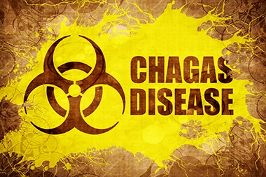 Be Alert for Chagas Infections—300,000 Americans Already Have It
