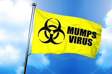 CDC: Mumps Cases Surpass 2017's Total, with New York and Michigan Leading the Way