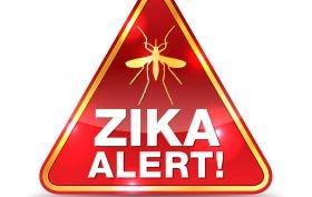 A Zika Virus alert warning icon illustration. Vector EPS 10 available.